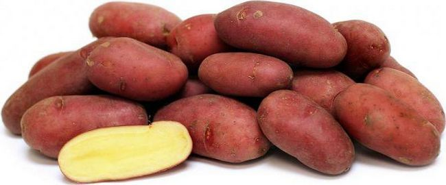 soiuri de cartofi fotografie și descriere