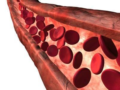 importanța compoziției și funcției sângelui