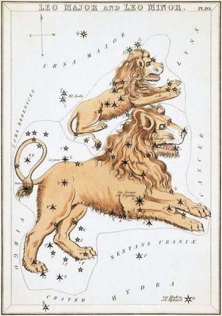Constelația micului leu