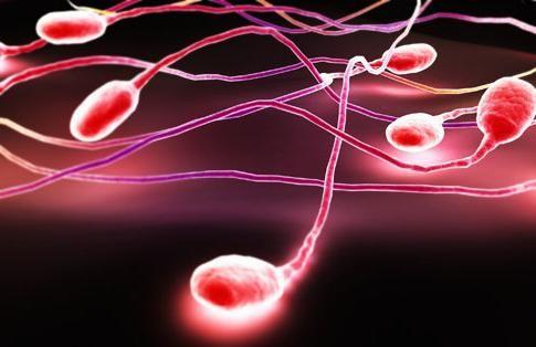 sperma curge