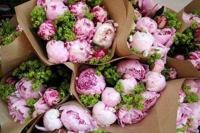 Buchet de bujori de nunta - frumos, blând, elegant