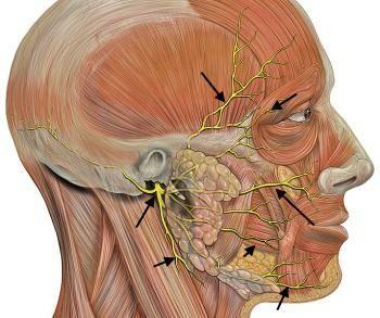 simptome nervoase ternare