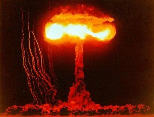 Ciuperci nucleare