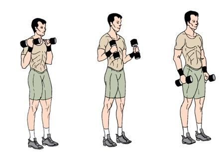 Exercițiul