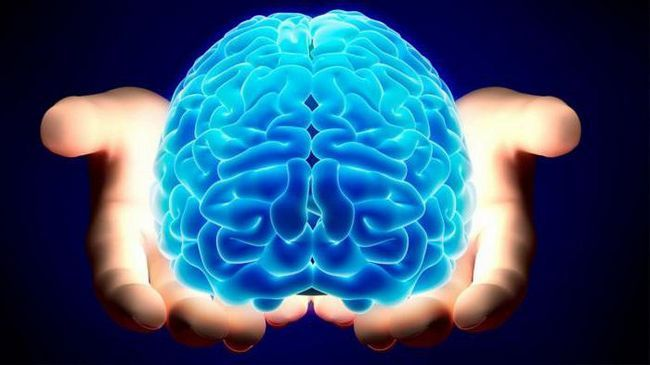 cât de mult cântă creierul uman?