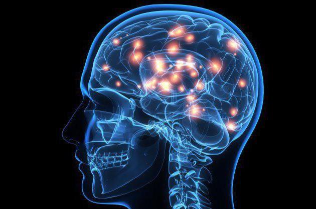 cât de mult cântă creierul adultului?