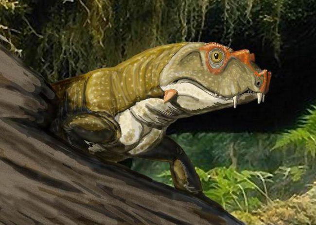 Extincția permiană mare