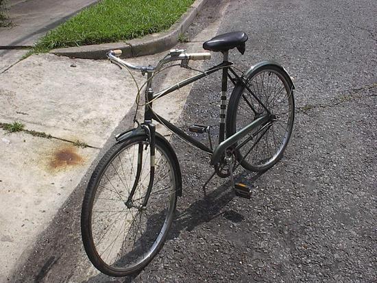 Bike `Kama`: caracteristicile și istoria sa
