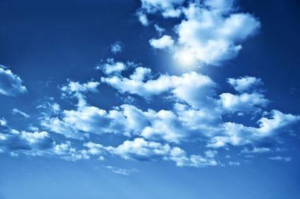 Cumulus nori