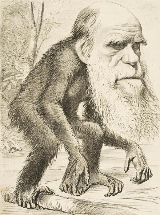 Contribuția lui Darwin la biologie este scurtă