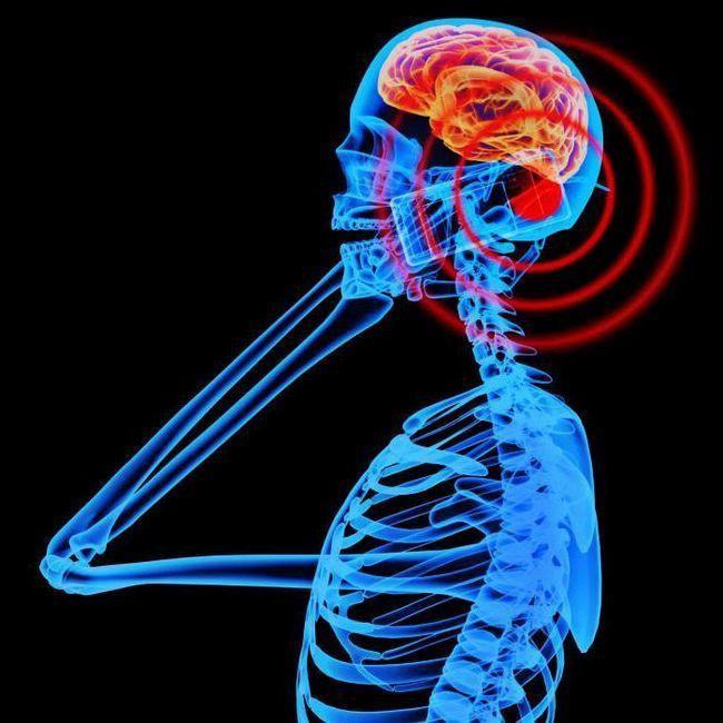 influența radiațiilor electromagnetice asupra organismelor vii