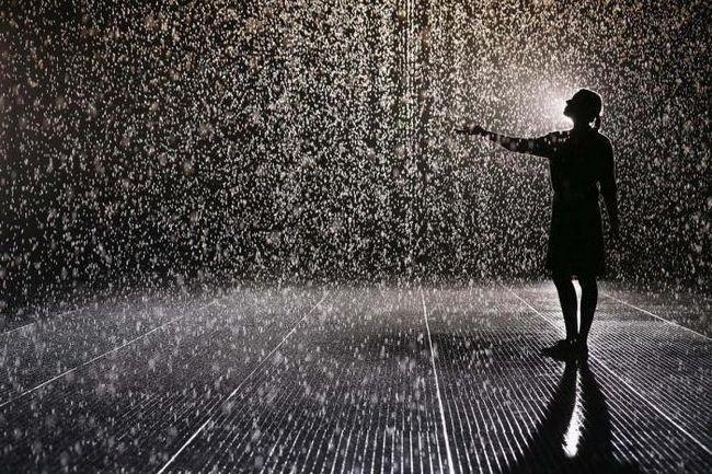 cad sub ploaia într-un vis