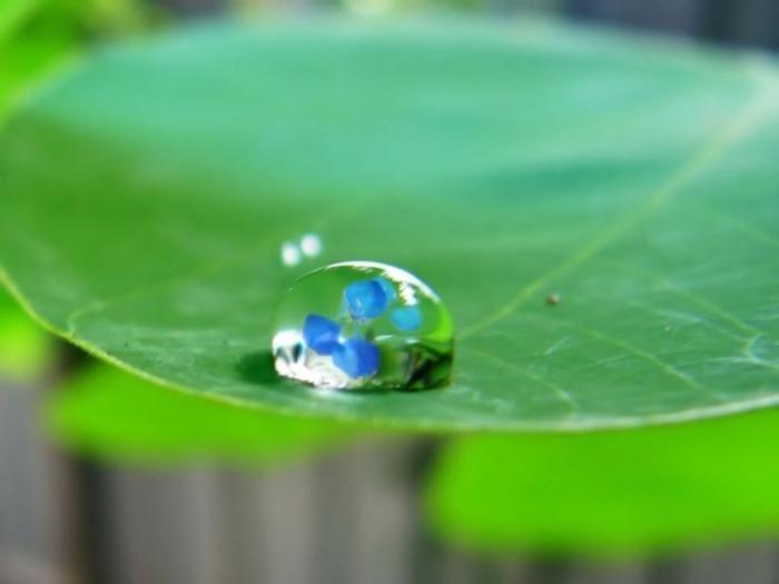 balansul de apă