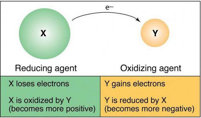 proprietățile de restaurare ale atomilor
