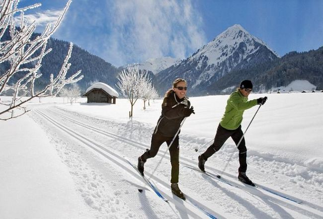 Alegem schi fond