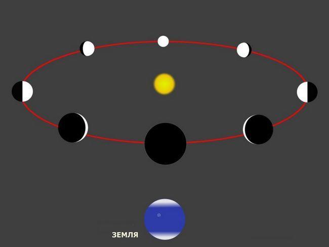 faze ale lui Venus