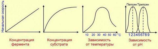 ecuația ratei de reacție chimică față de temperatură