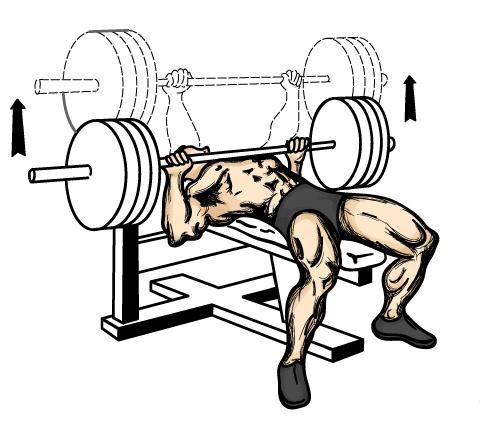 Bench press - cel mai bun exercițiu pentru piept