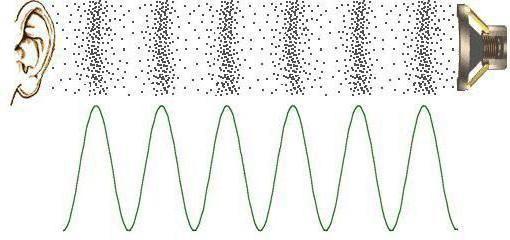 exemple de fenomene sonore în fizică